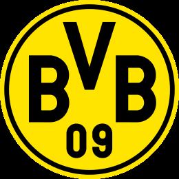 31_bvb